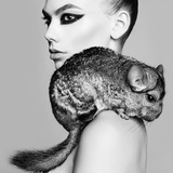 beautiful sexy woman with chinchilla