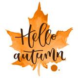 Hello autumn hand written inscription - 118969303