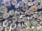 Pilha de lenhas