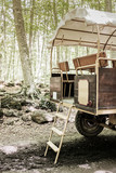 Traditional horse carriage stopped in a mediterranean beech