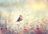 Pole z dzikich kwiatów i ptaka