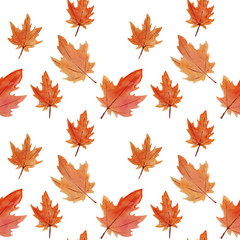 watercolor pattern of autumn orange yellow maple leaves on white