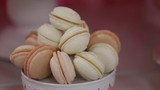 White truffle macaroons in plate