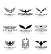 Set of vector eagles and logo design elements (19)