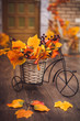 Small decorative bicycle with basket filled with yellow autumn leaves and grapes berries on the wooden floor.