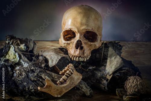 Zdjęcia na płótnie, fototapety, obrazy : Skull on weathered wood in Halloween night, still life style