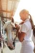 jeune fille 11 ans harnachant un poney dans une écurie