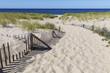 A path to a deserted beach on Cape Cod, Massachusetts.