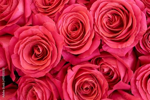 Heap of roses