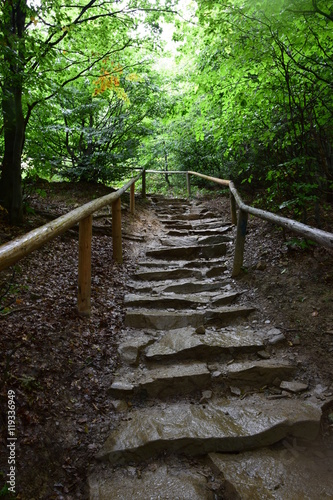Szlaki Bieszczady