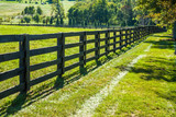 Fence Line and Field