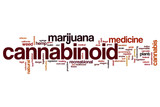 Cannabinoid word cloud