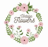 vintage flowers frame decoration vector illustration design