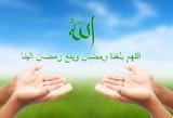 Arabic Inspirational