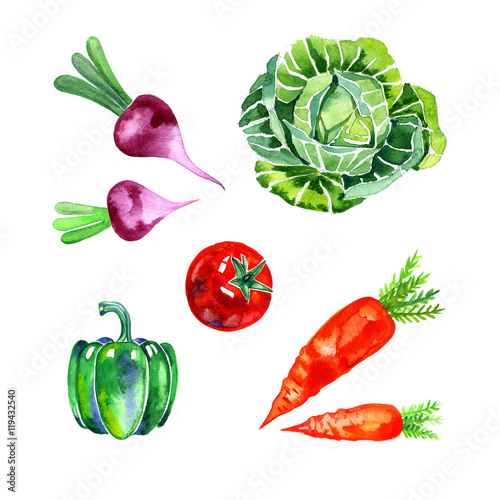 Poster watercolor vegetables set, food illustration on white background