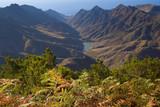 Vista en la subida a Anaga, reserva de la biosfera en tenerife