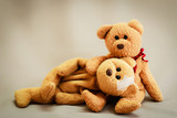 teddy bear couples love.
