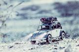 Vacanze di Natale sulla neve