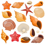 Shells And Sea Stars Icon Set - 119524919