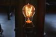 Thomas Edison National Historical Park (U.S. National Park Service), Edison's Light Bulb