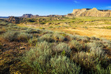 landscape of bardenas reales natural park in summer