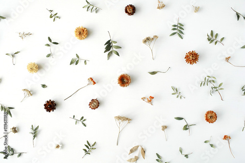 yellow dry flowers, branches, leaves and petals pattern isolated on white background. flat lay, overhead view - 119611188