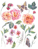 Set vintage watercolor roses, leaves and flowers