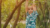 Boy hanging on a branch