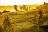 Dramatic Ethiopian landscape