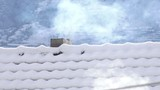 Snow capped roofs with smoke from the chimney,