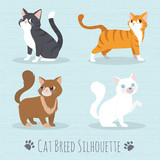 Cat Breed Silhouette