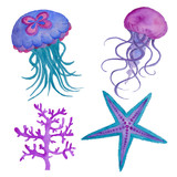 Blue Jellyfish Watercolor Illustration Isolated on the white Ocean Water Sea Star fish Coral
