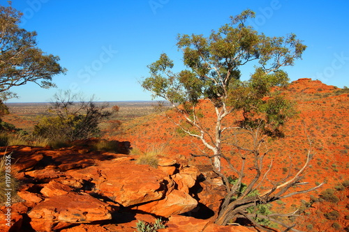 Poster Oranje eclat Kings Canyon, Australia