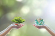 Leinwanddruck Bild - Tree planting and green earth on volunteering hands for World environment day concept. Element of the image furnished by NASA