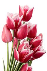 Grand bouquet © dtvphoto