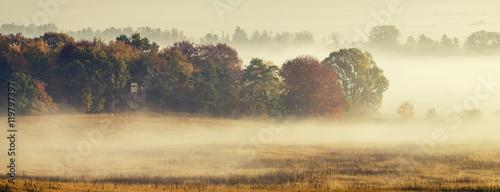 Piękny,mglisty wschód słońca nad wiejską łąką - 119797397