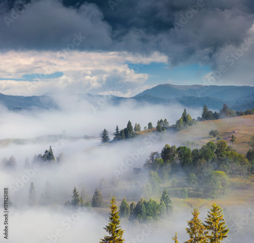 Foggy summer scene in the Carpathian mountains - 119825188