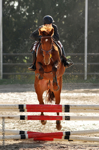 Poster saut d'obstacle en équitation