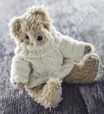 Cute teddy bear - 119846783