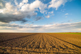 Agricultural landscape, arable crop field