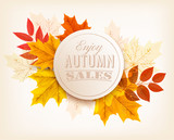 Autumn sales banner. Vector.