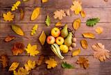 Autumn leaf and fruit composition. Studio shot, wooden backgroun