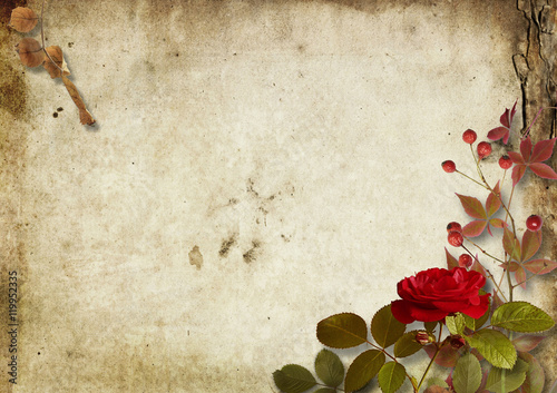 Fotobehang Retro Vintage autumnal background with roses and ashberry