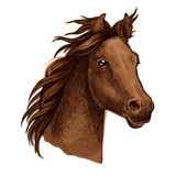 Brown horse portrait with waving mane