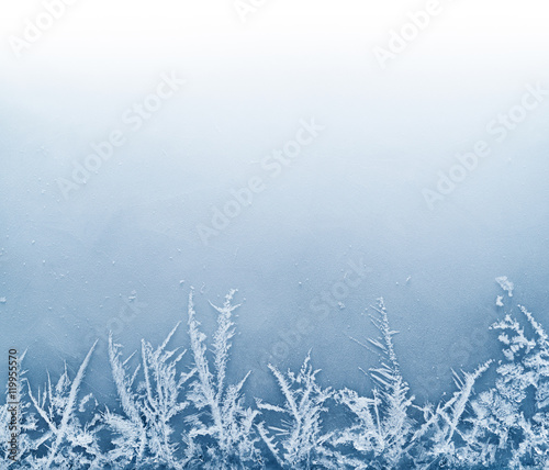 Foto Murales Frost Crystal Border on Ice