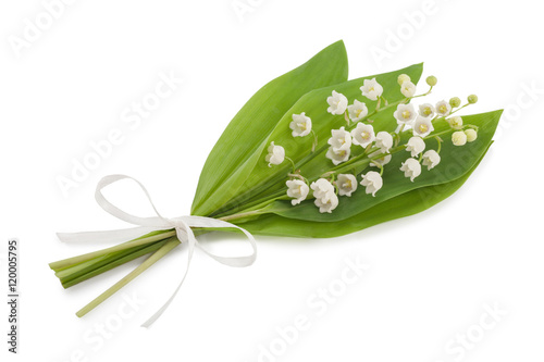 Staande foto Lelietje van dalen Lily of the valley isolated on white background
