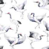 Hand-drawn watercolor seamless pattern with white Japanese dancing cranes. Repeated background with delicate birds