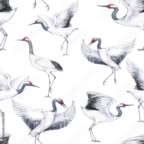 Hand-drawn watercolor seamless pattern with white Japanese dancing cranes. Repeated background with delicate birds - 120070319