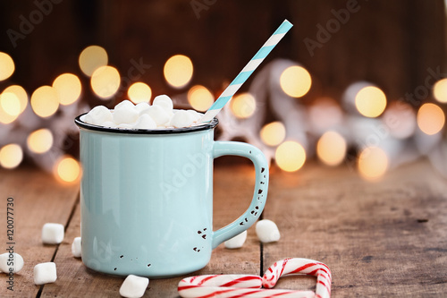 Foto op Canvas Chocolade Hot Cocoa with Marshmallows
