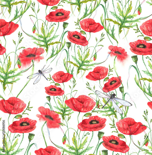 Obraz Hand-drawn watercolor floral seamless pattern. Summer meadow flowers - poppy on the white background. Repeated pattern for textile, wallpaper. Red colorful blossom